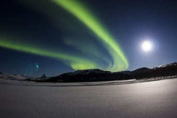 The Northern Lights Show