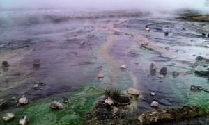 Geothermal area of Geysir